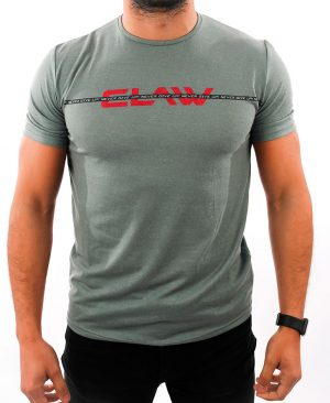T-shirt B4 - gray - Claw